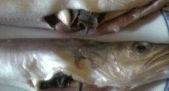 Peste al cartoccio sau in punga la cuptor
